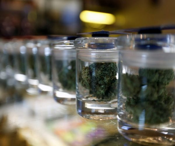 California Marijuana Dispensary